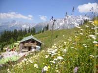 Alpine Summer Opening Festival im Salzburger Land