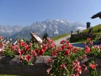 Prächtige Ausblicke ins Salzburger Land