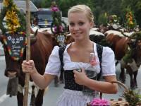 Bauernherbst Pinzgau