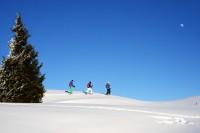 Prächtige Urlaubsmomente im Salzburger Land