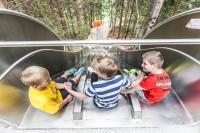 Waldrutschenpark-Hochkönig