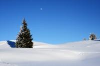 Winteridylle im Pinzgau