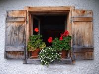 Schöne Aussichten im Salzburger Land